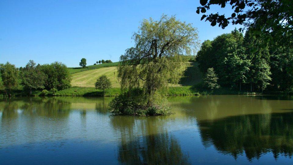 Jeden ze šesti rybníků v Bystrém uprostřed krásné přírody