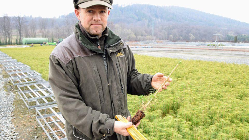 Majitel lesní školky Patrik Barnet měří délku sazenice