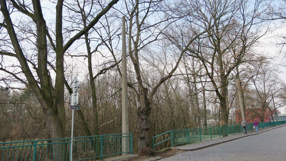 Původní sloupy trolejového vedení z padesátých let 20. století v Kunětické ulici poblíž labského zdymadla