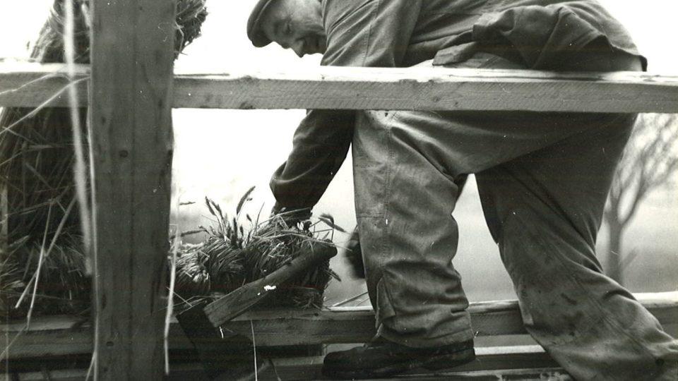 Tesař František Pilař z Možděnice při rekonstrukci hájenky z Kozojed na Veselém Kopci Foto