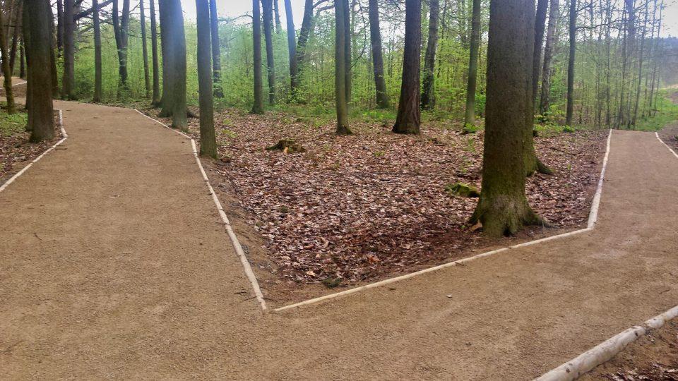 Lesopark Ostende u Velkého boleveckého rybníka v Plzni má nové cesty i tůně. Úpravy přišly město Plzeň na zhruba na 2,5 milionu korun