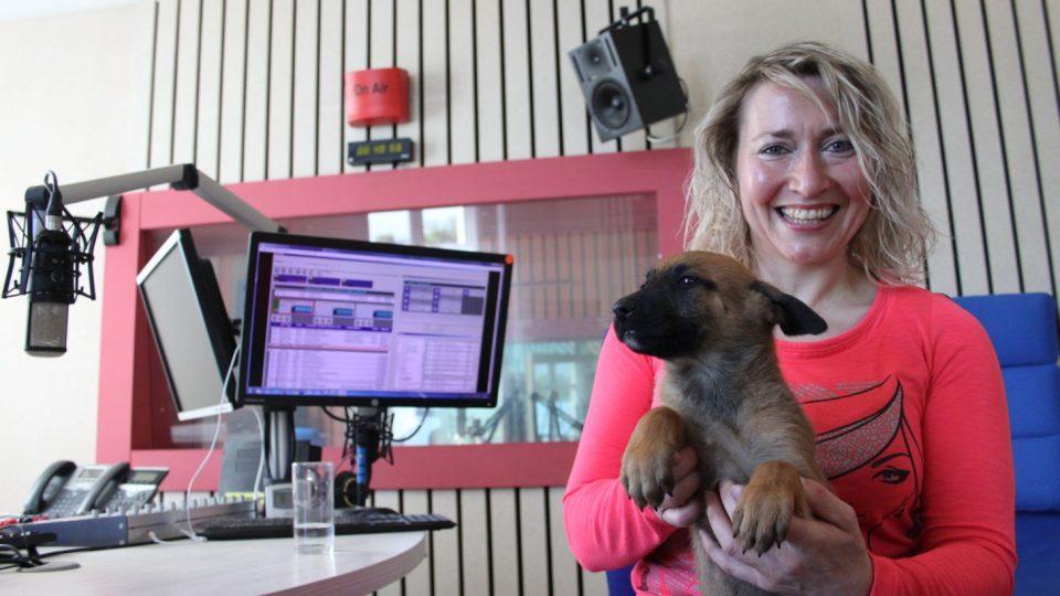 Jitka Pospíchalová, psí chovatelka z Lejšovky, ve studiu Českého rozhlasu Hradec Králové