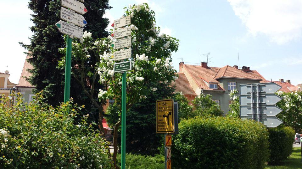 Netolicko je protkáno hustou sítí pěších i cyklistických tras