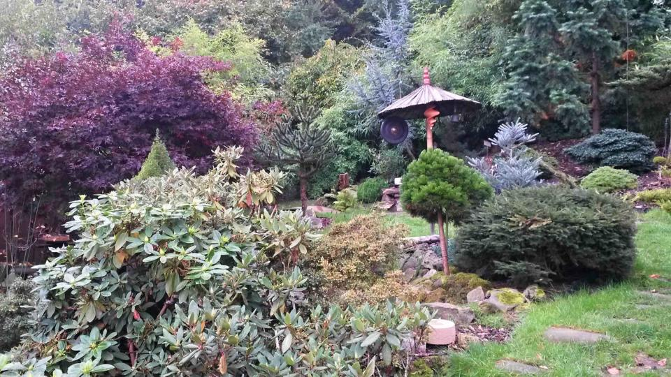 Asijská zahrada v srdci Lašska