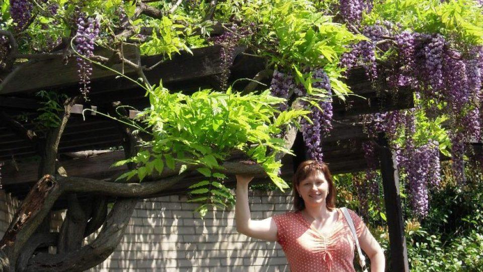 Snímek z fotografické soutěže pořadu Zelené světy - téma Kvetoucí keře. Zaslala Věra Velková