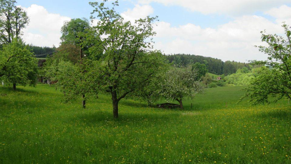 Tzv. Dolík v Kozlově, který často zpodobňoval Rudolf Vejrych na svých obrazech, inspiroval také Maxe Švabinského