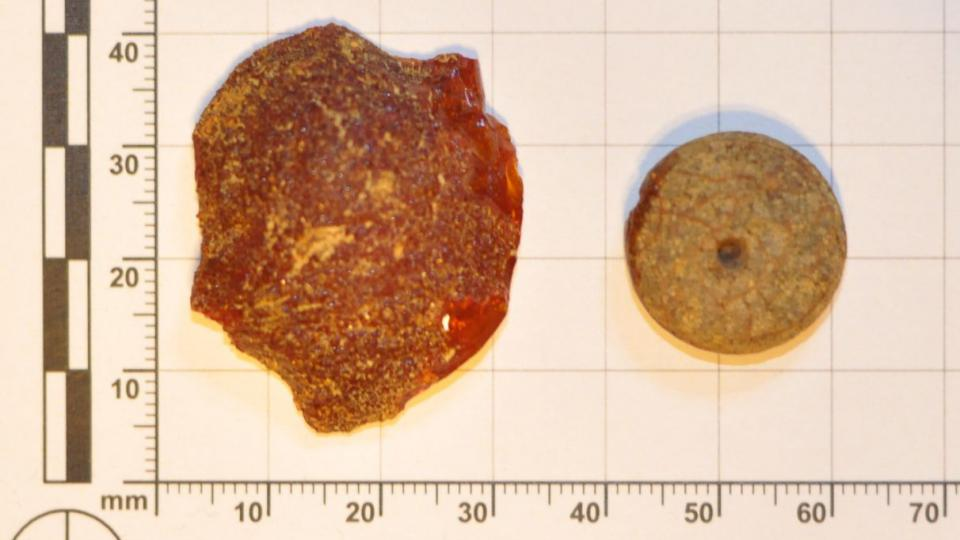 Snímek jantarového nálezu archeologa Radka Nováka