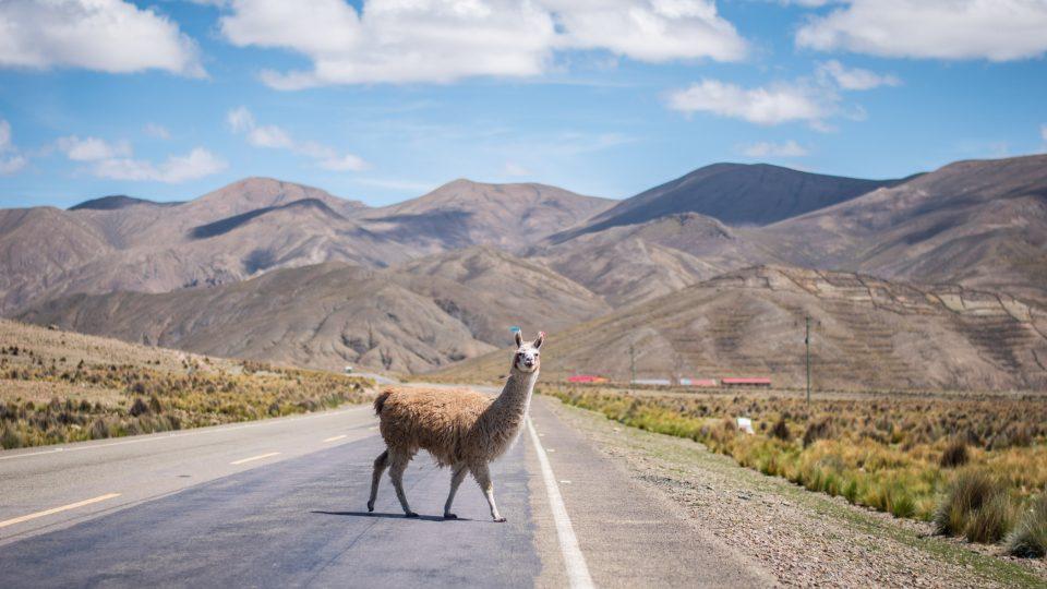 Dominika Gawliczková jela na skútru z Kolumbie do Uruguaye