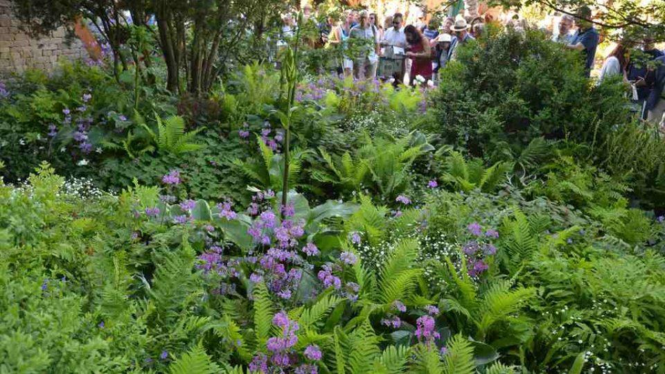Ukázková zahrada na Chelsea Flower Show
