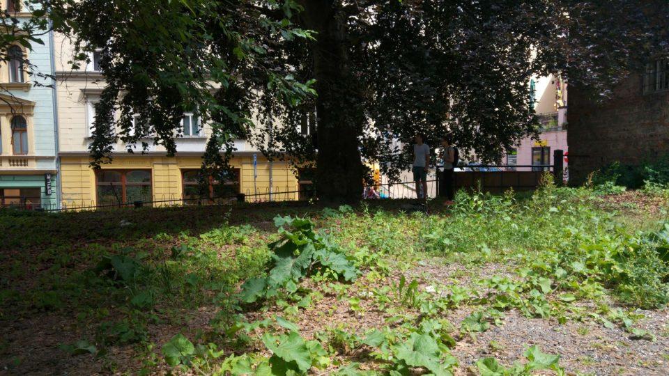Proměna Frýdlantské ulice v Liberci na Letní scénu