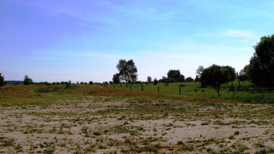 Krajina v bývalém vojenském prostoru u Milovic