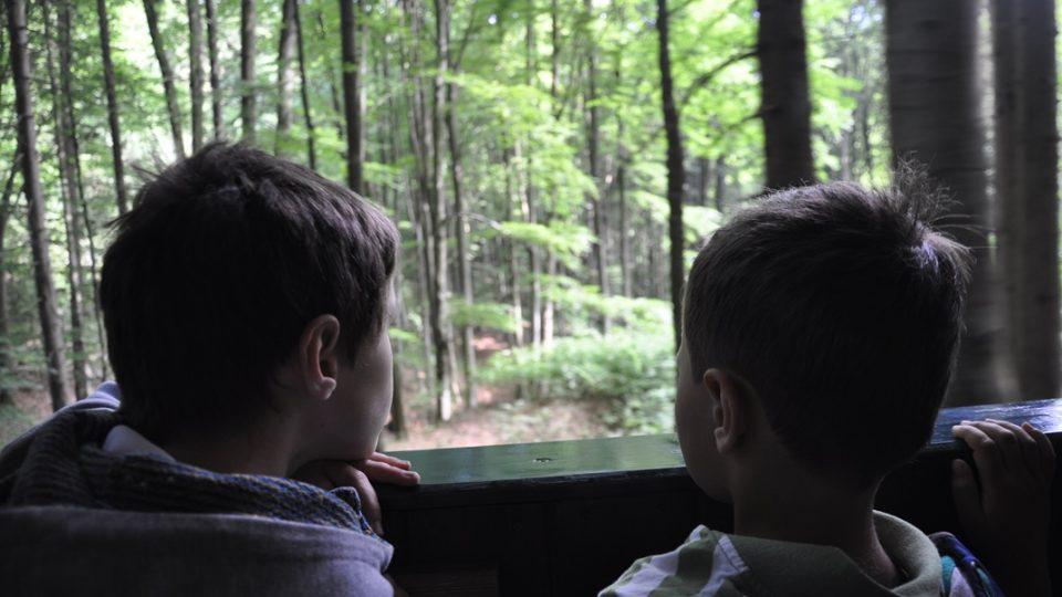 Cesta lesem v otevřeném vagonku za párou je velkým dobrodružstvím