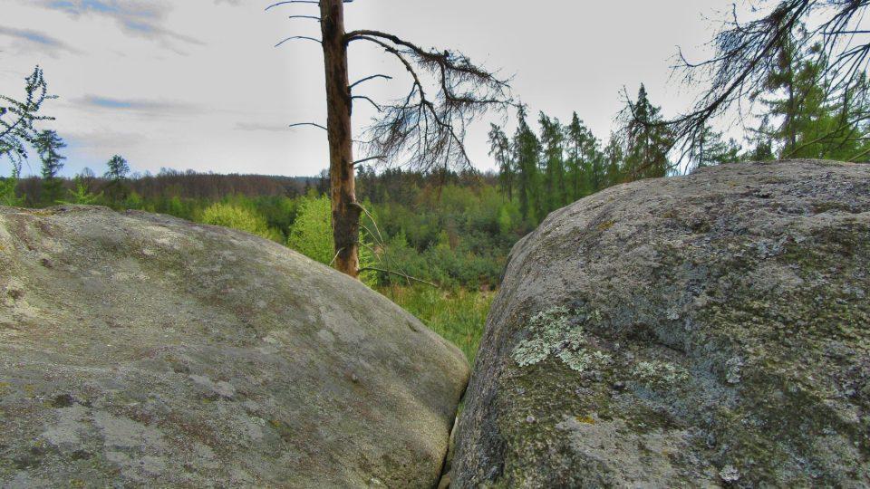 Kameny porostly lyšejníky