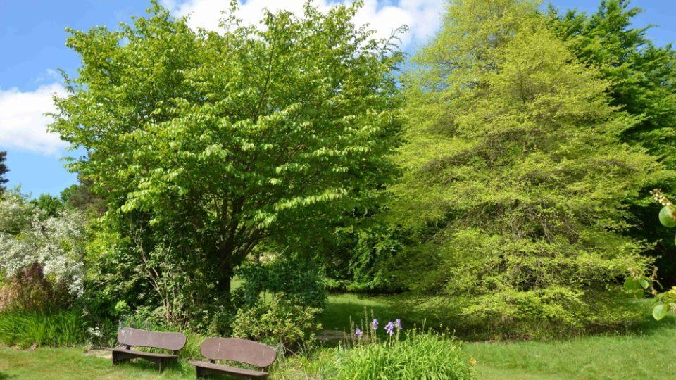 Několik anglických zahrad jsme navštívili při natáčení magazínu Zelené světy. Na snímku High Beeches