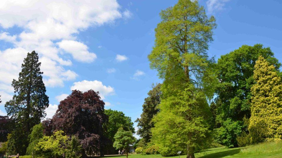Několik anglických zahrad jsme navštívili při natáčení magazínu Zelené světy. Na snímku Wakehurst Place