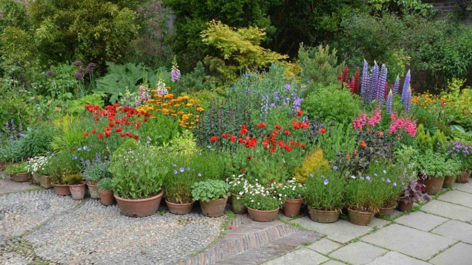 Několik anglických zahrad jsme navštívili při natáčení magazínu Zelené světy. Na snímku Great Dixter