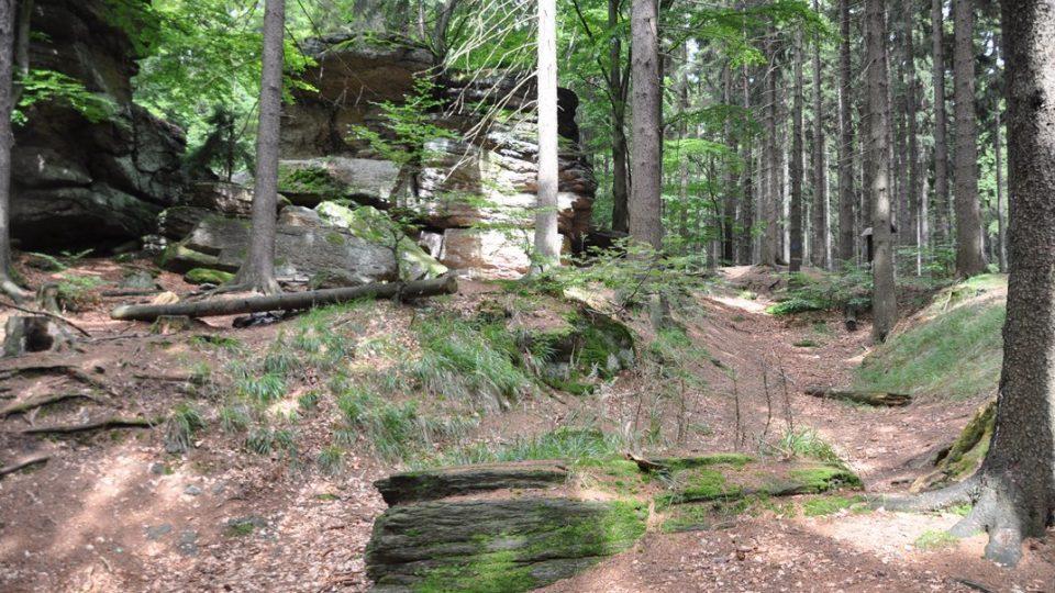 V terénu jsou patrné pozůstatky hradního příkopu