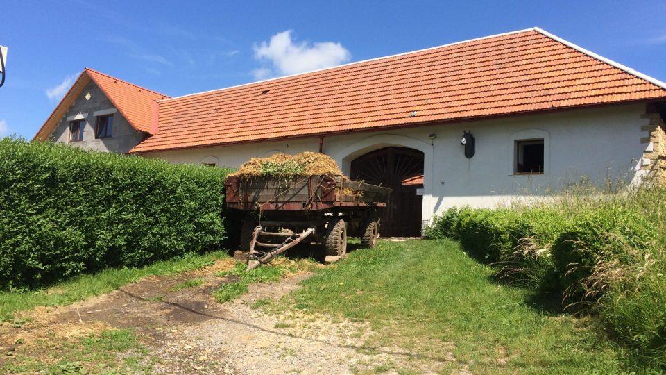 Nenápadný statek v malé vesnici Pazuše u Litomyšle znají dobře světoví filmaři i fanoušci filmových koní