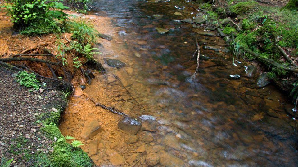 Soutok Sirného pramenu a Hamerského potoku