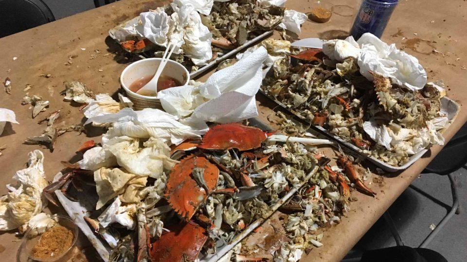 Pozůstatky po krabí hostině skončí na kompostu. Nic se nevyhodí bez užitku