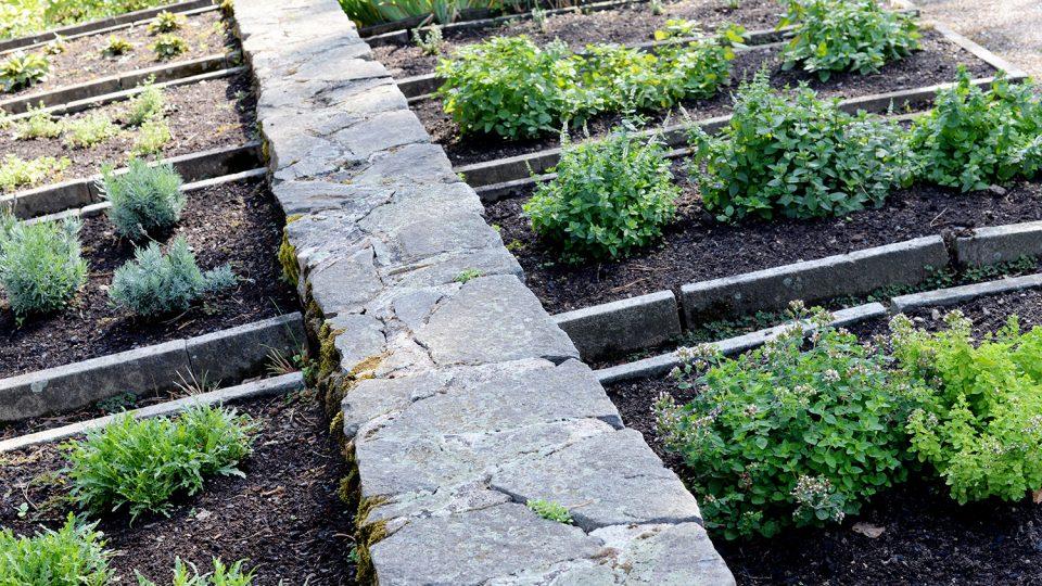 Bylinky v hradní zahradě dodnes zalévají ručně