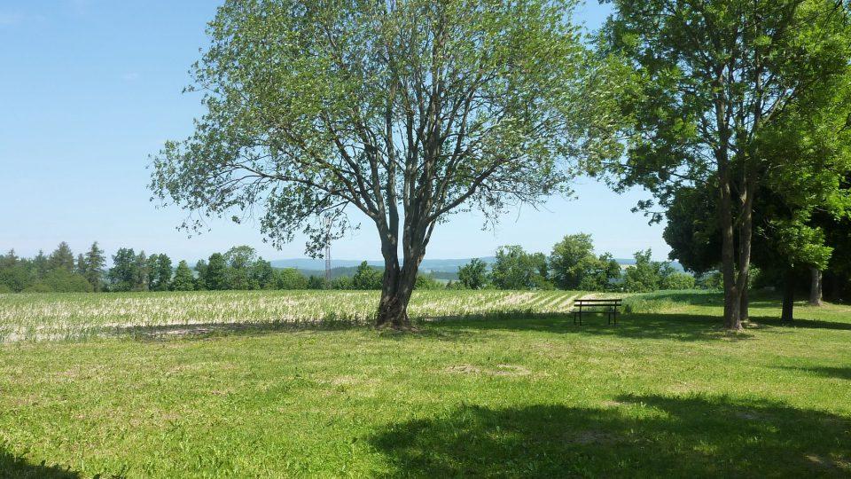 Od Rozálek se dá vydat přímo do polí a lesů za Žamberk