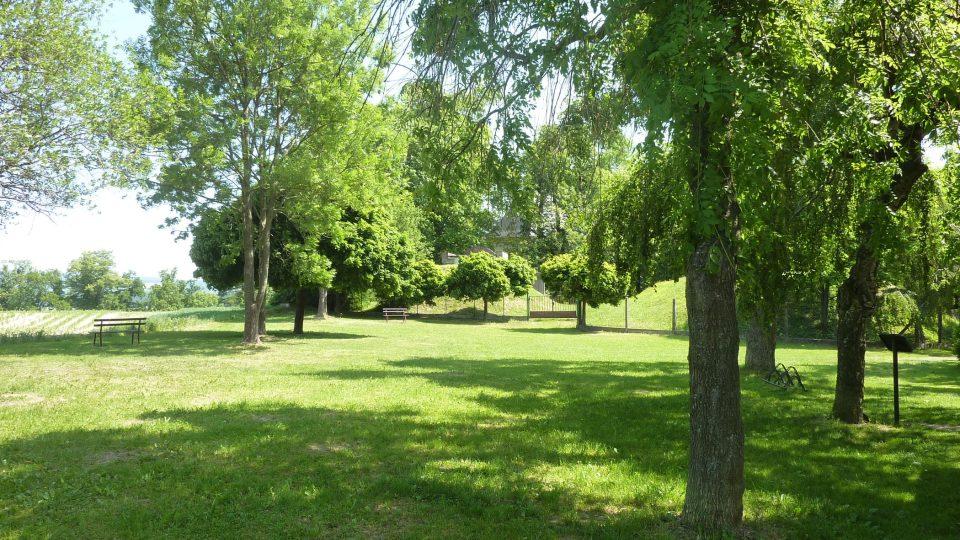 V okolí rozhledny je park, oblíbené místo k procházkám