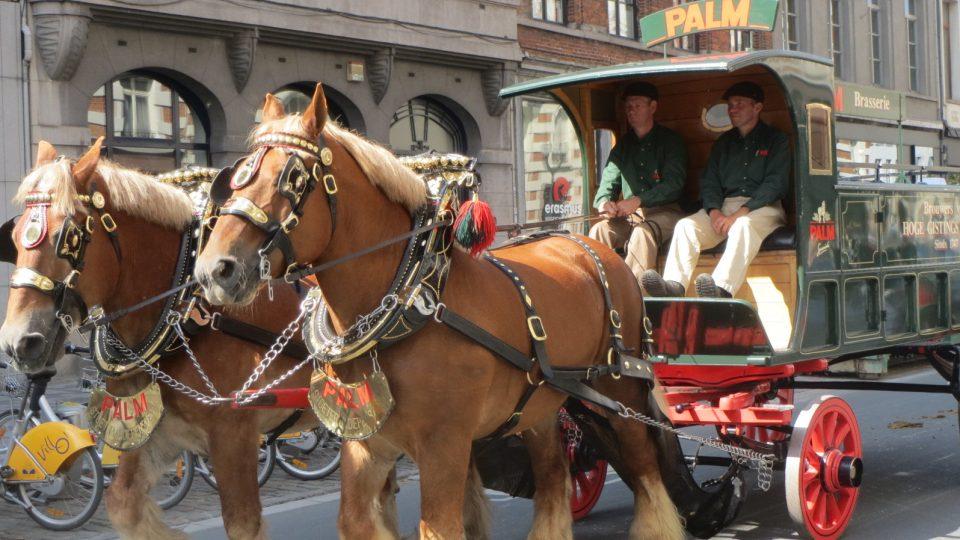 Tradice k velkým pivním festivalům patří