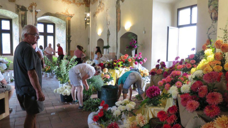 Příprava mezinárodní výstavy jiřin na pardubickém zámku