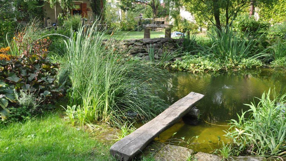 V zahradě za kostelem můžete v jezírku krmit pstruhy