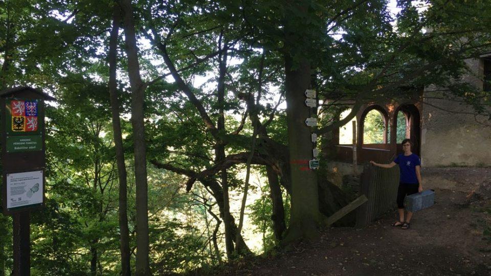 NPP Babiččino údolí - Rýzmburský altán