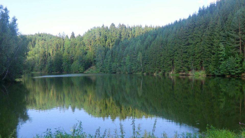 Pohled na rybník Šušek