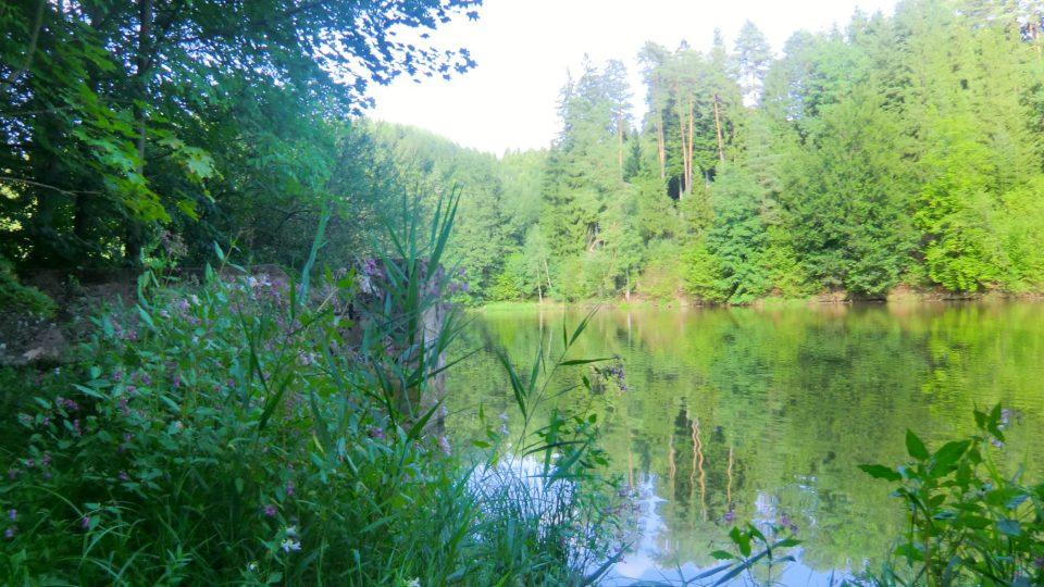 Pohled z cyklostezky kolem rybníka