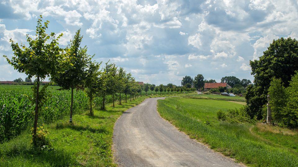 Naučná stezka vede i po okrajových částech obce, je to pěkná procházka