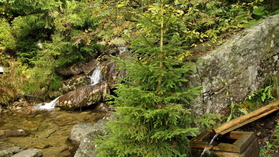 U Kotelského potoka, který se později vlévá do Jizerky, je odpočinkové místo se studánkou pro žíznivé