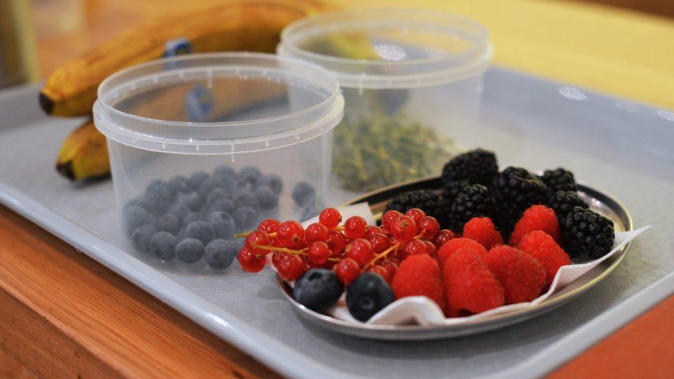 Důležitou součástí jsou ovocné plody