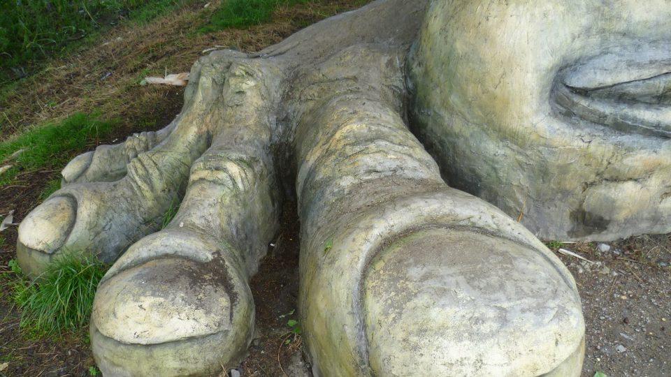 Propracované nohy Hamroně