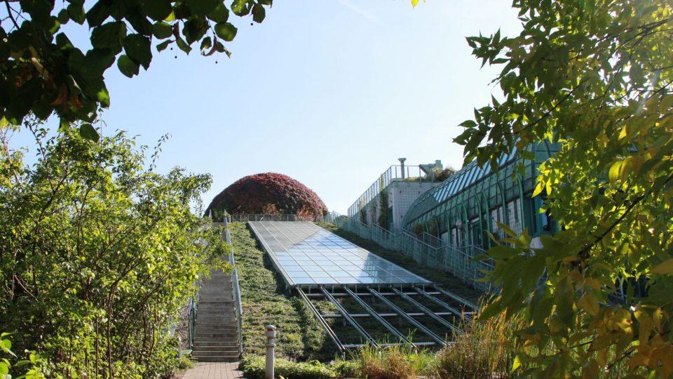 Zahrada vznikla na střeše univerzitní knihovny ve Varšavě před 15 lety