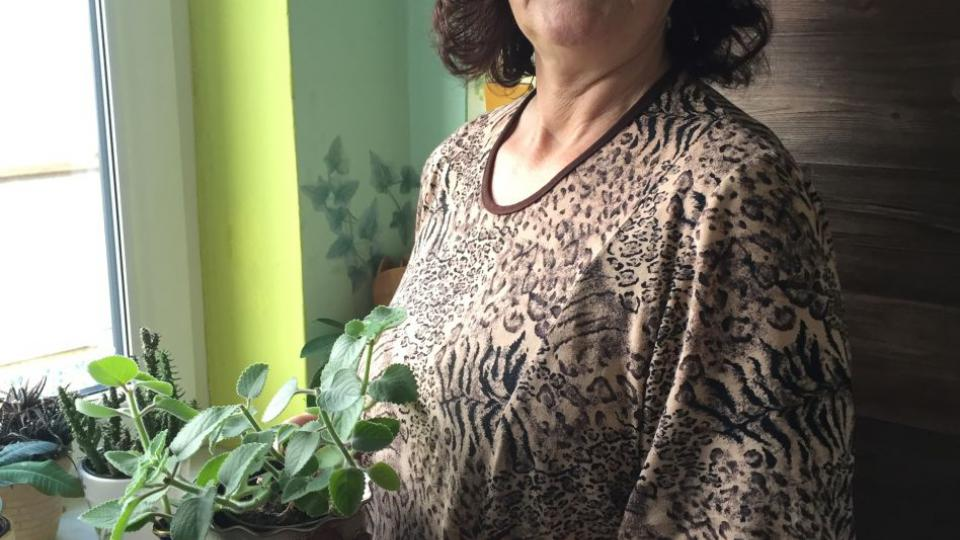 Nenápadná zelená rostlinka je zdatným pomocníkem při boji s rýmou. Recept na rýmovníkový čaj