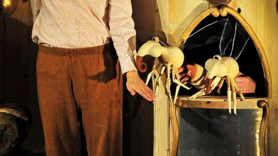 Divadlo Drak se proměnilo ve Včelí dům. Medová královna učí děti pokoře, trpělivosti i překonání strachu