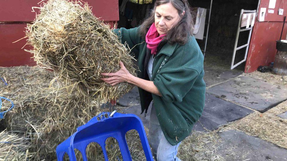 Susan Hornsteinová připravuje krmení pro své svěřence