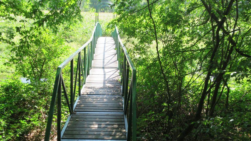 Pokud máte rádi krásnou přírodu a při procházce si všímáte nejen stromů, ale i hornin, pak se vydejte na Vinici