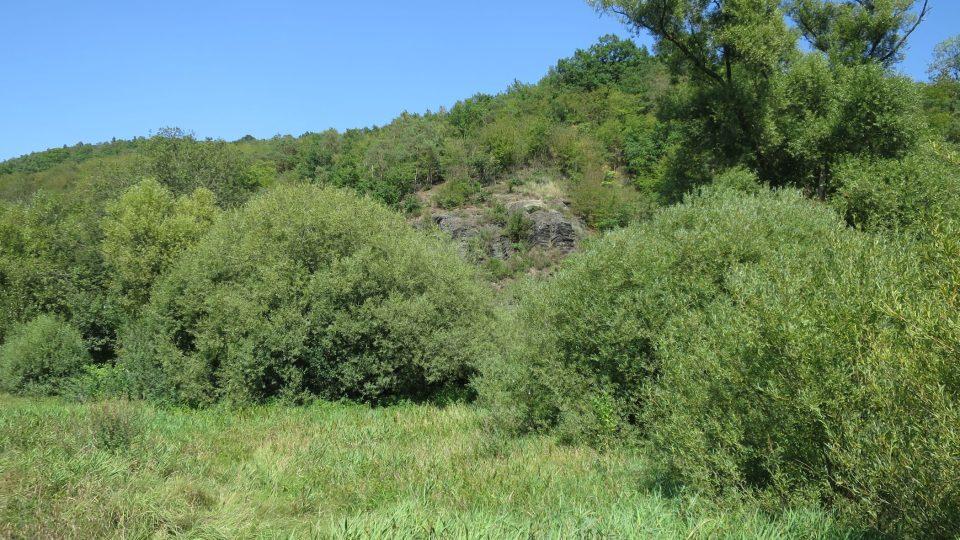 Skály s vrstvami jineckého souvrství jsou viditelné na pravém břehu Litavky i při plné vegetaci