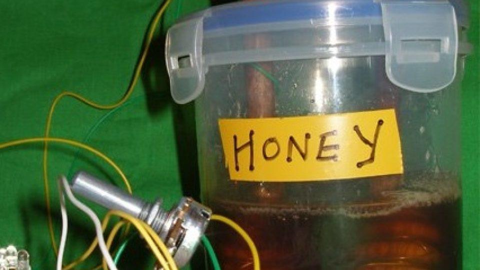 Med je zajímavý vodič, říká včelař-hudebník Bioni