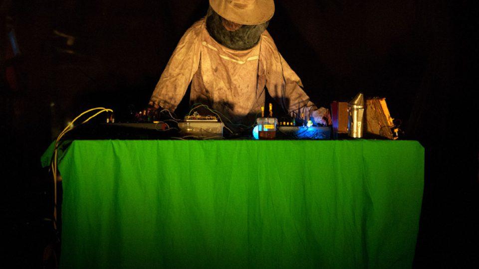 Bioni Samp vytváří hudbu s pomocí nahrávek zvuků úlu a syntezátoru