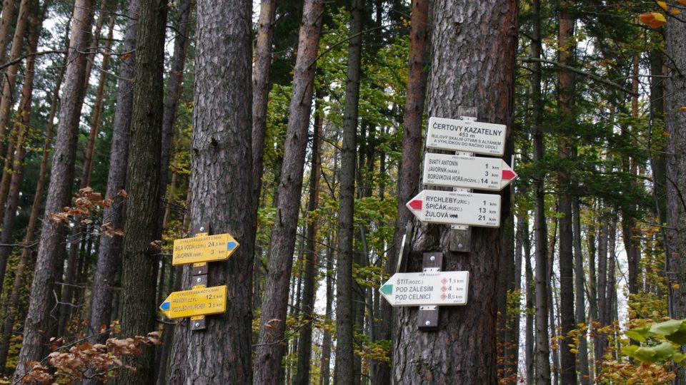 Přímo kolem skalních útvarů prochází několik značených cest a cyklotrasa
