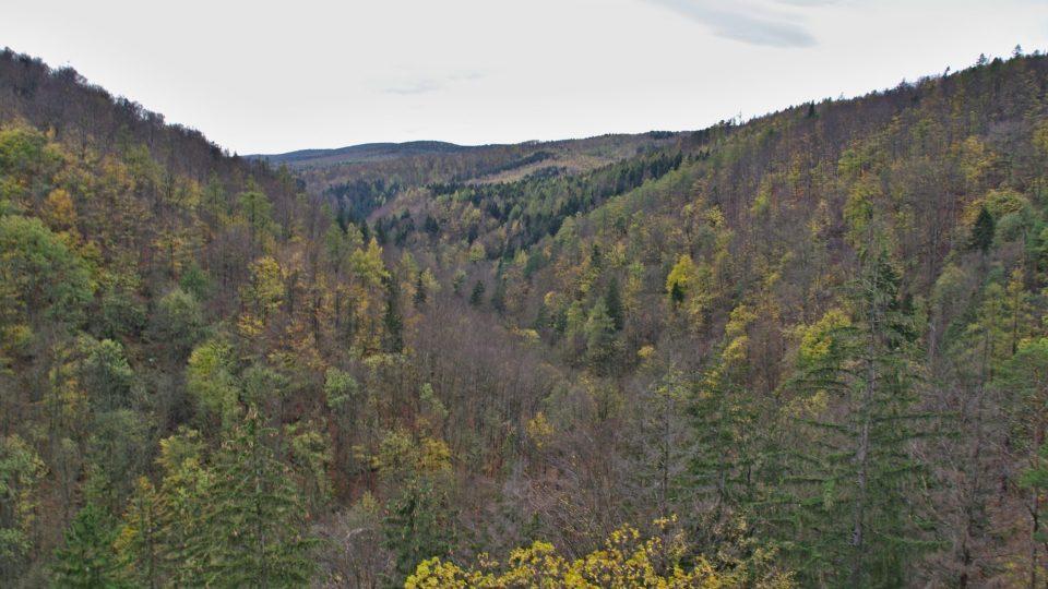Račí údolí pod kazatelnami se táhne až k polské hranici