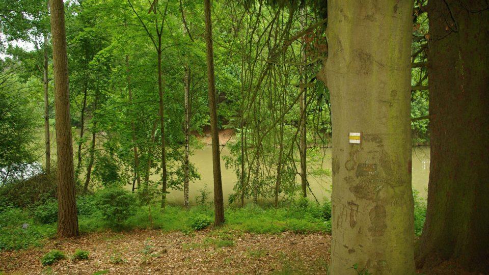 Pod kaplí Nejsvětější Trojice u Ostružna je rybník Jíkavec
