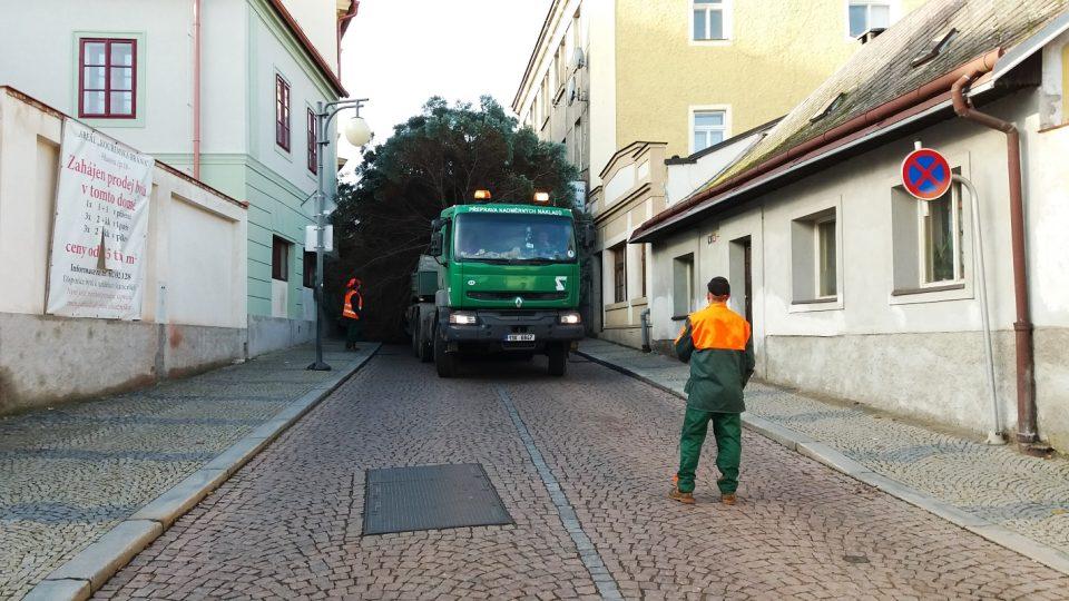 Převoz stromu úzkými ulicemi Kutné Hory