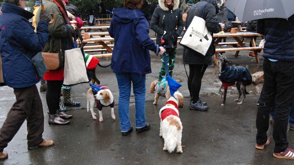 Psů ve vánočních svetrech se na jihu Londýna sešly asi tři stovky a vytvořily světový rekord